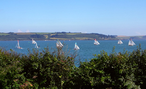 Falmouth Bay: many planning lawyers doubt the coalition can significantly alter EU rules governing protected sites such as this. Tim Green photo