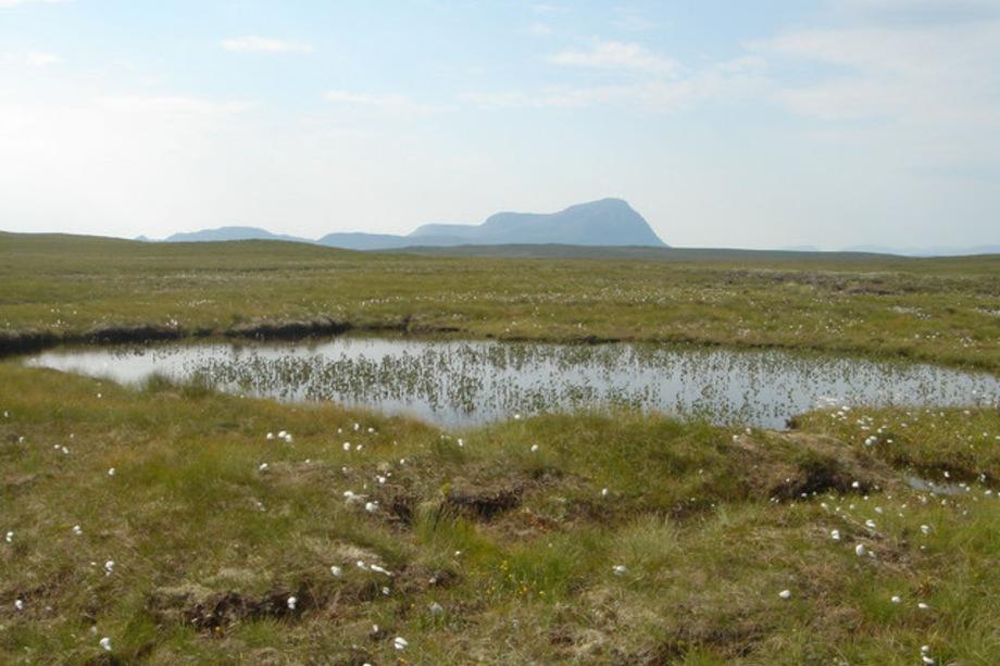 The A' Mhòine peatlands - image: geograph / David Glass (CC BY-SA 2.0)