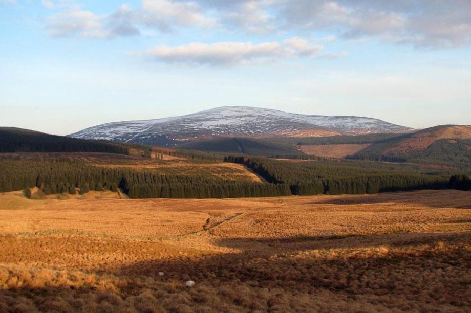 Cairnsmore of Carsphairn (pic: sarah d via Flickr)