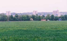 Stevenage: failed in High Court battle