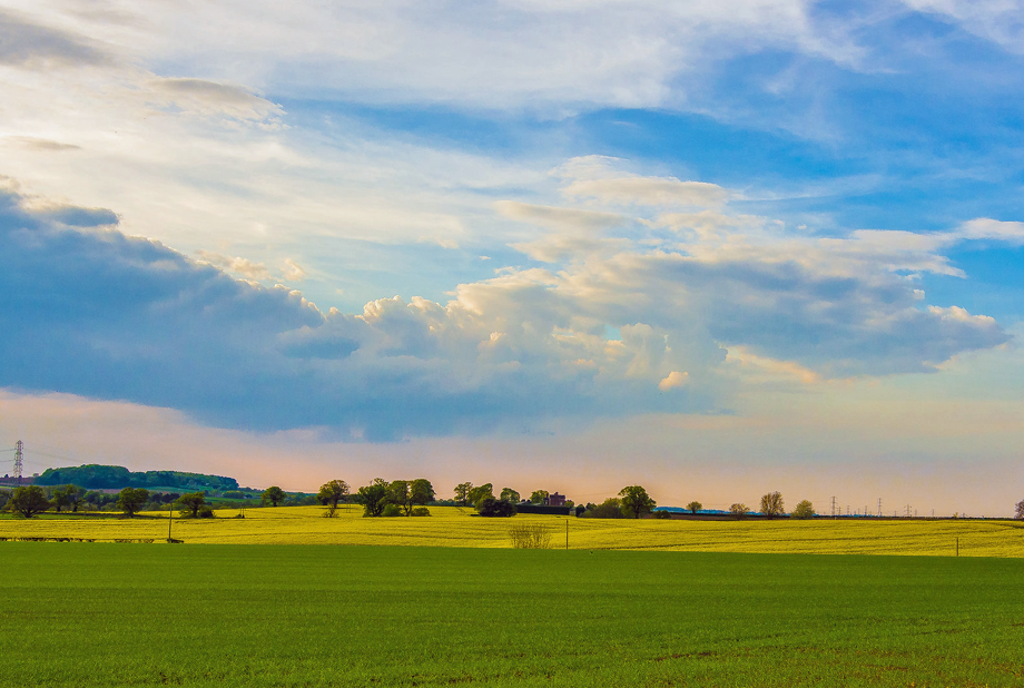 Black Country green belt land at Kingswinford. Image by William Randle, Flickr