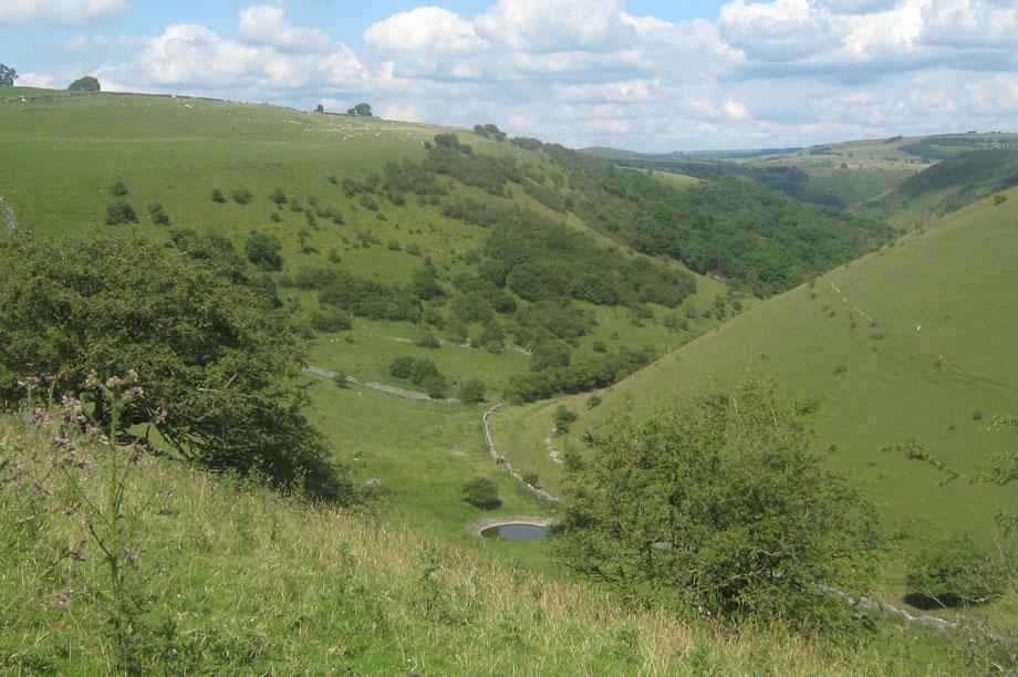 Derbyshire Dales: draft local plan withdrawn