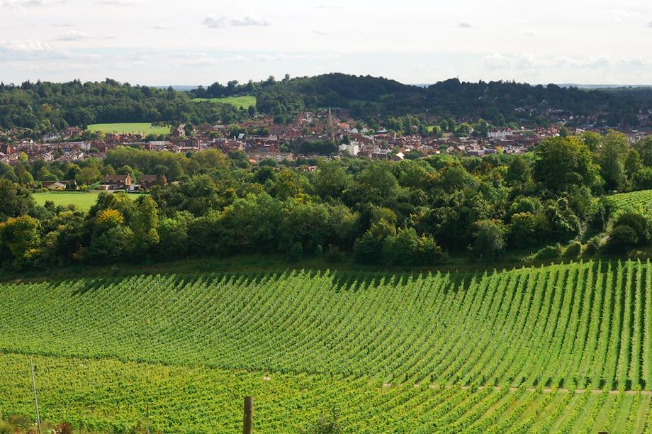 View over the town of Dorking, Surrey (Pic: Getty)