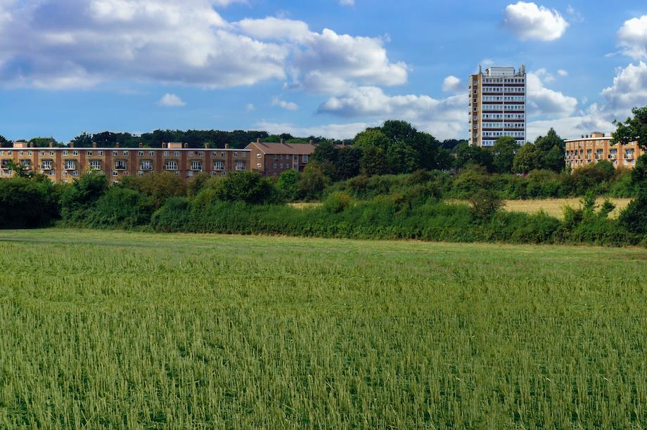 Fields outside Harlow, Essex, where the highest proportion of green belt was released (Pic: Getty)