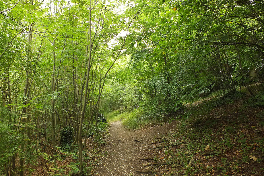 Nature reserves: conservation groups fear worst