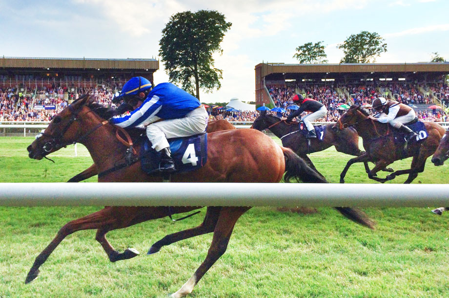 Newmarket: minister finds housing scheme would have no adverse impact on horseracing industry